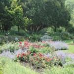 20120526-Arboretum-071