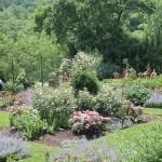 20120526-Arboretum-072