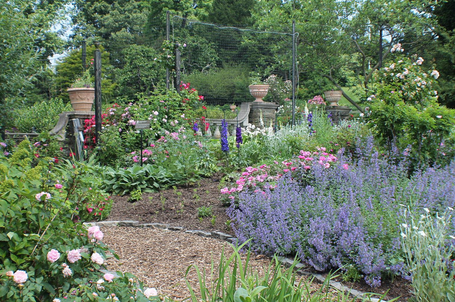 20120526-Arboretum-089