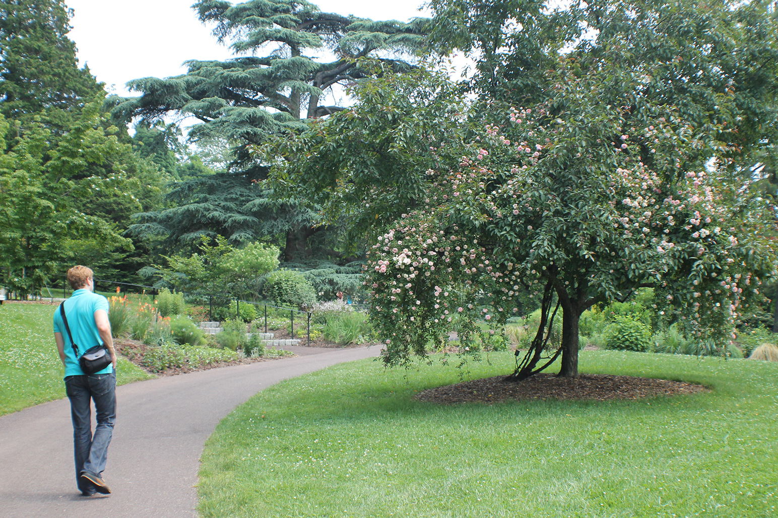 20120526-Arboretum-093