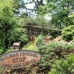 20120526-Arboretum-101