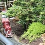 20120526-Arboretum-119