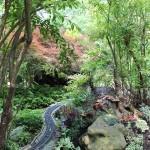 20120526-Arboretum-144
