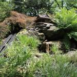 20120526-Arboretum-146