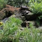 20120526-Arboretum-147