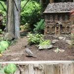 20120526-Arboretum-151