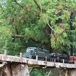 20120526-Arboretum-154