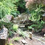 20120526-Arboretum-165