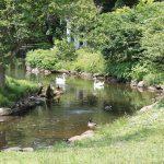 20120526-Arboretum-203