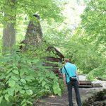 20120526-Arboretum-206