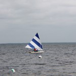 20120617_PenguinSunfish_38