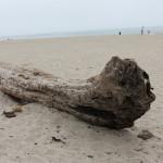 20120630_RioDelMarBeach_02