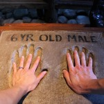Our hands compared to the hands of a gorilla