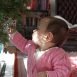 Christmas-2013-100