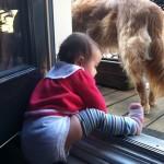 13 months: attempting balcony escape