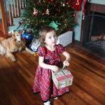 Christmas-2015-041